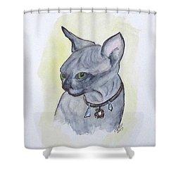 Else The Sphynx Kitten Shower Curtain