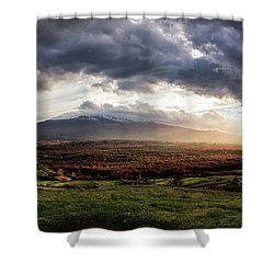 Elysium Shower Curtain
