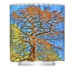 Shower Curtain featuring the photograph Embraced By Autumn by Kerri Farley