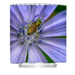 Embraced Shower Curtain