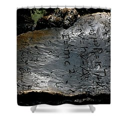 Emc2 Shower Curtain