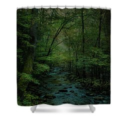 Emerald Creek Shower Curtain by Lena Auxier