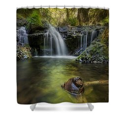 Emerald Falls Shower Curtain by David Gn