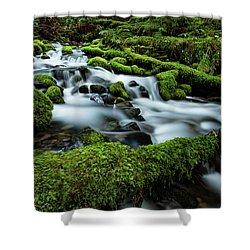 Emerald Flow Shower Curtain