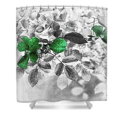 Emerald Green Of Ireland Shower Curtain