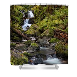 Emerald In Autumn Shower Curtain