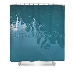 Emerald Lake Glacier Waters Shower Curtain by Angela A Stanton