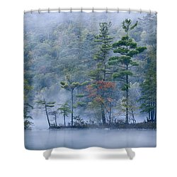 Shower Curtain featuring the photograph Emerald Lake In Fog Emerald Lake State by Tim Fitzharris