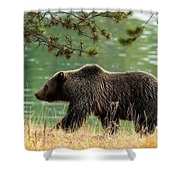 Emerald Stroll Shower Curtain