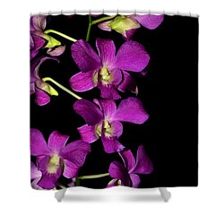 Shower Curtain featuring the photograph Emma Queen Orchid 001 by George Bostian