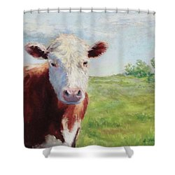 Emmett Shower Curtain by Vikki Bouffard