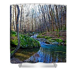 Emory Gap Branch Shower Curtain by Paul Mashburn
