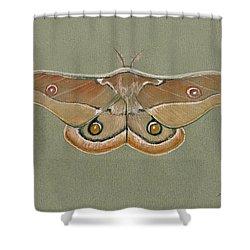 Emperor Gum Moth Shower Curtain