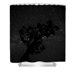 Shower Curtain featuring the photograph Empty Night Tree by T Brian Jones