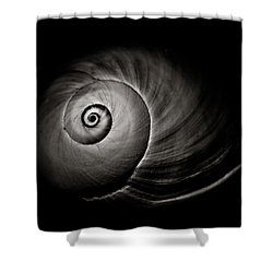 Empty Shell Shower Curtain