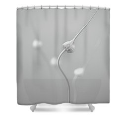 En Garde Shower Curtain