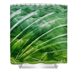 Encaustic Abstract Green Fan Foliage Shower Curtain