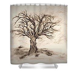 Enchanted 3 Shower Curtain