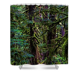Enchanted Shower Curtain by Alana Thrower