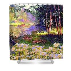 Enchanted By Daisies, Modern Impressionism, Wildflowers, Silver Birch, Aspen Shower Curtain