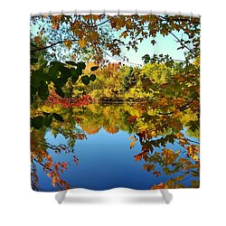 Shower Curtain featuring the photograph Enchanted Fall by Valentino Visentini