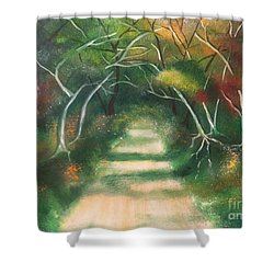 Shower Curtain featuring the painting Enchanted Forest by Denise Tomasura