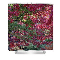 Enchanted Forest Shower Curtain by Doris Potter
