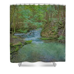 Shower Curtain featuring the digital art Enchanted Forest One by Randy Steele