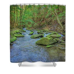 Shower Curtain featuring the digital art Enchanted Forest Three by Randy Steele