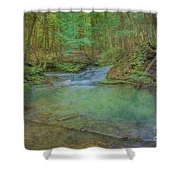 Shower Curtain featuring the digital art Enchanted Forest Two by Randy Steele
