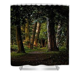 Enchanted  Shower Curtain by Gary Bridger