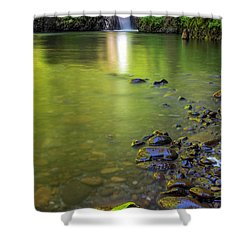 Enchanted Gorge Reflection Shower Curtain by David Gn