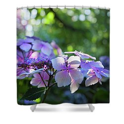 Enchanted Hydrangea Shower Curtain by Theresa Tahara