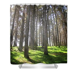 Enchanted Shower Curtain by Laurie Search