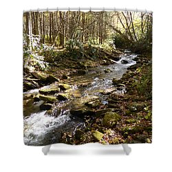 Enchanted Stream - October 2015 Shower Curtain by Joel Deutsch
