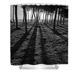 Enchanted Sunset In Monochrome Shower Curtain