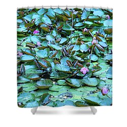 Painted Water Lilies Shower Curtain by Theresa Tahara