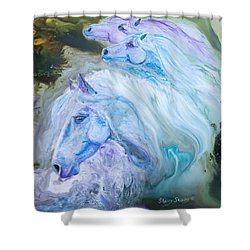Enchanted Waters Shower Curtain by Sherry Shipley