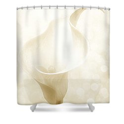 Enchanting Shower Curtain by Gabriella Weninger - David