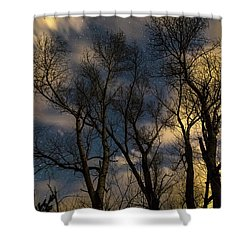 Enchanting Night Shower Curtain by James BO Insogna