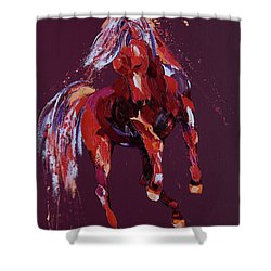 Enchantress Shower Curtain by Penny Warden