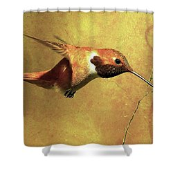 Encounter 2 Shower Curtain