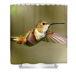 Encounter Shower Curtain