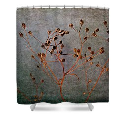 Shower Curtain featuring the photograph End And Beginning by Randi Grace Nilsberg