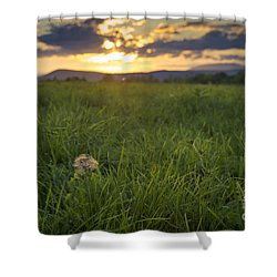 Shower Curtain featuring the photograph End Of Summer by Alana Ranney