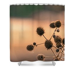 Shower Curtain featuring the photograph End Of Summer by Lisa L Silva