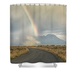 End Of The Rainbow Shower Curtain by Sandra Bronstein