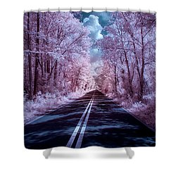 Shower Curtain featuring the photograph End Of The Road by Louis Ferreira