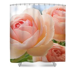Endless Summer 3 Shower Curtain