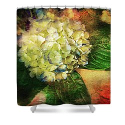 Endless Summer Shower Curtain by Colleen Taylor